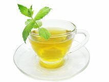 Cup of tea with mint Royalty Free Stock Image