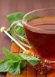 Cup of tea with mint Royalty Free Stock Photo