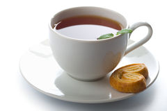 Cup of tea with mint and cookie isolated Royalty Free Stock Image