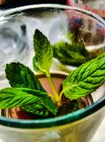 Cup of tea with mint leafs, traditional drink. I love tea with mint added to the cup royalty free stock images