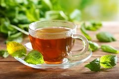 Cup of tea with mint leaves royalty free stock photos