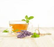 Cup tea with mint. Stock Photography