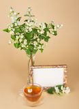 Cup of tea, motley frame and jasmine bouquet Stock Photo