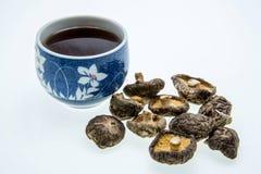 Cup of tea and mushroom varieties Royalty Free Stock Image