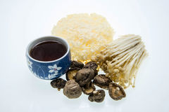 Cup of tea and mushroom varieties Royalty Free Stock Photography