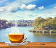 Cup of tea for natural landscape background Stock Image