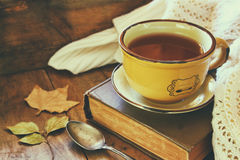Cup of tea with old book Royalty Free Stock Image