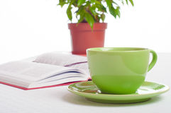 Cup of tea, open book and indoor plant. Concept of reading, stud Stock Photo
