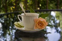 A cup of tea with orange rose. Porcelain cup of tea and orange roses in a glass table. Reflect Stock Photo