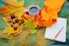 Cup of tea with orange scarf near yellow leaves, chesnuts and blank notepad, pen royalty free stock photos
