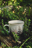Cup of tea outside Stock Images