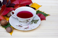 Cup of tea. Tea party in autumn garden - is a pleasant pastime Stock Photography