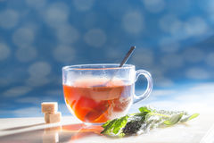 Cup of tea. Picture of cup of tea with sugar and herbs at sunny day Stock Photo