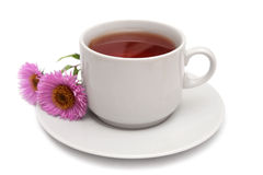 Cup of tea and pink daisies. Cup of tea and two daisies isolated on white Royalty Free Stock Images