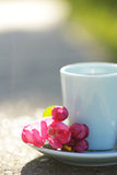 Cup of tea with pink flowers isolated on nature background Stock Photography