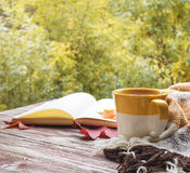 Cup of tea with plaid, leaves and notepad on the wood background Royalty Free Stock Images