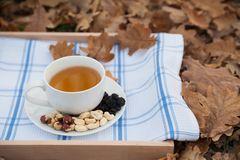 The cup of tea and the plate with hazelnuts is on a napkin Royalty Free Stock Photography
