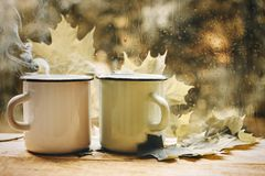 Cup of tea at a rainy window autumn mood day leaf. Fall background with copy space stock photo