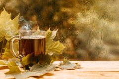 Cup of tea at a rainy window autumn mood day leaf. Fall background with copy space stock photography