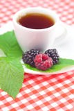 Cup of tea,raspberry and  blackberry with leaves Stock Photo