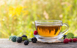 Cup of tea with raspberry and blackberry on meadow background Royalty Free Stock Photo