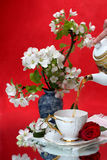 Cup of tea a red background Stock Image