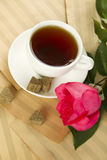 A cup of tea and rose Royalty Free Stock Photo