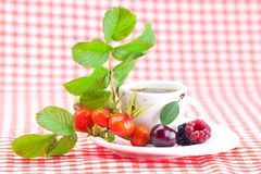 Cup of tea and rosehip Royalty Free Stock Photos