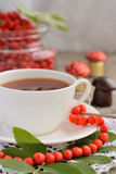 Cup of tea and rowan beads on a wooden table Stock Photos