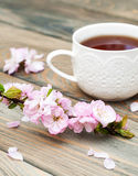Cup of tea and sakura blossom Royalty Free Stock Photo