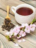 Cup of tea and sakura blossom Stock Photos