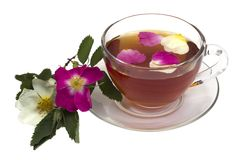 Cup of tea. On a saucer with dogrose flowers isolated on a white background Stock Photos