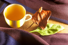 Cup of tea and scarf. On wooden background royalty free stock images