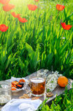 Cup of tea and simple breakfast outdoor in spring royalty free stock photography