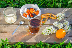 Cup of tea and simple breakfast outdoor in spring stock image