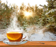 Cup of tea on snow-covered forest background Royalty Free Stock Photo