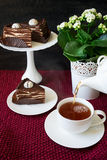 Cup of tea with Spartak cake Royalty Free Stock Photos