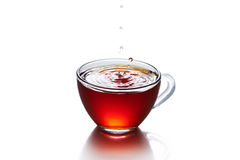 Cup of tea with splash isolated. On the white background royalty free stock image