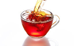 Cup of tea with splash isolated. On the white background royalty free stock images