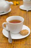 Cup of tea spoon and cookies on saucer Royalty Free Stock Photography