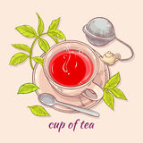 Cup of tea with spoon and strainer. Vector illustration with cup of tea, tea spoon and tea-strainer on color background Royalty Free Stock Photo