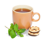 Cup of tea, sprig of mint and cookies isolated on white backgrou Royalty Free Stock Photography