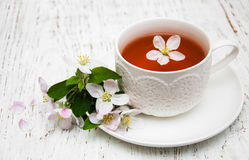Cup of tea and spring blossom Stock Photos