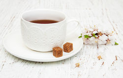 Cup of tea and spring blossom Stock Photo