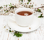 Cup of tea and spring blossom Royalty Free Stock Photography