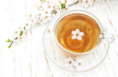 Cup of tea and spring blossom Royalty Free Stock Images