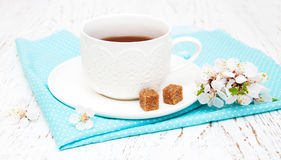 Cup of tea and spring blossom Stock Photography