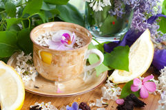 Cup of tea and spring branch Stock Photos