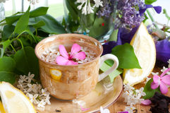 Cup of tea and spring branch Stock Image