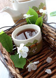 Cup of tea and spring branch on wooden Stock Photo